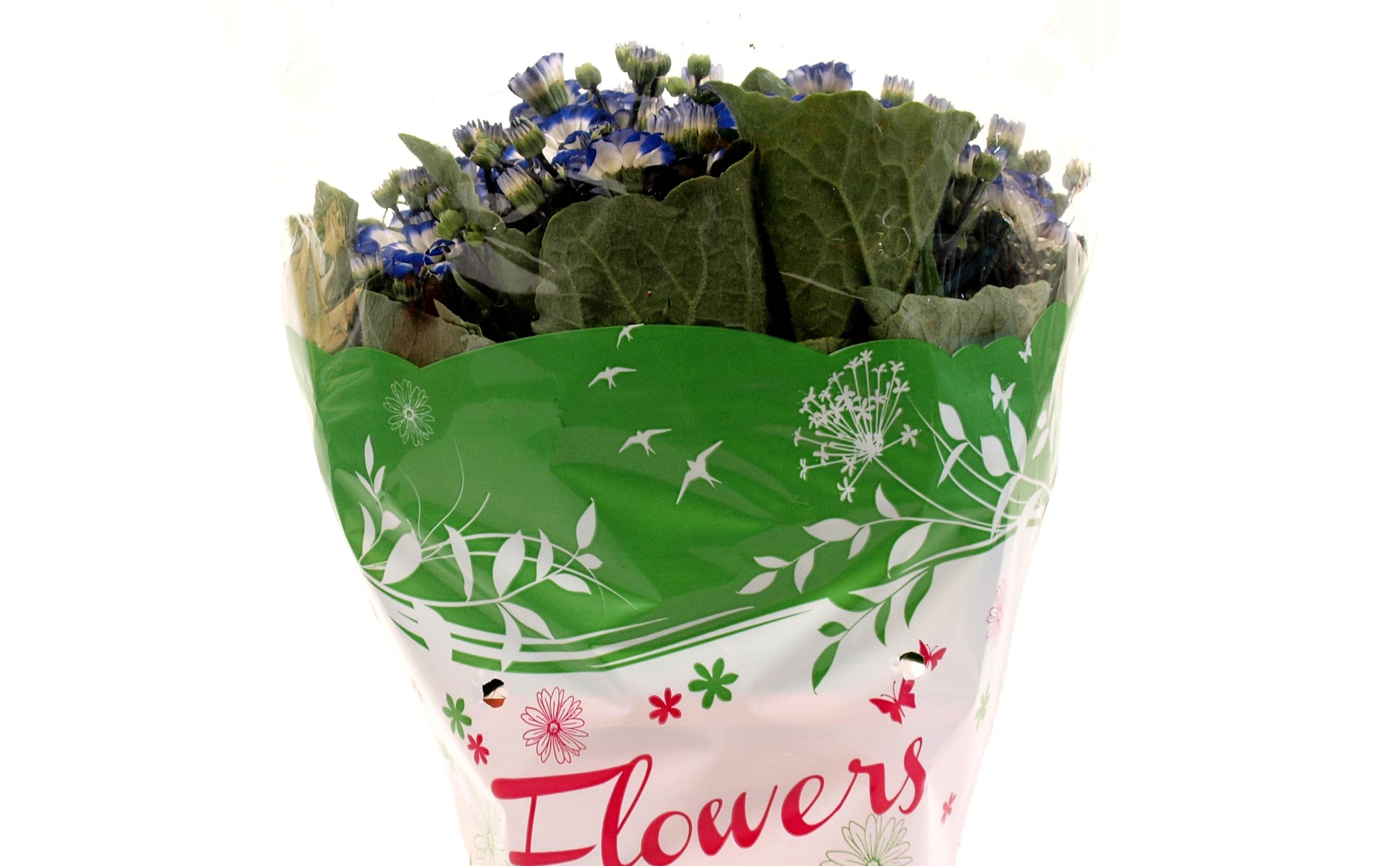 Flowers_verde_dett